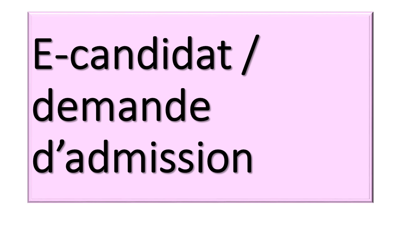 E-candidat Arts